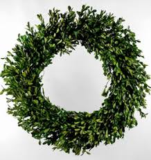 artificial boxwood wreath boxwood hops