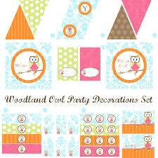 woodland owl party decorations owl birthday party owl baby