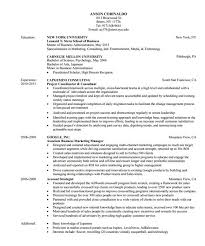 10 consultant resume templates free word pdf samples