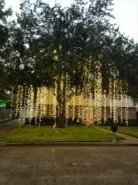 raining lights would to do this to the big tree in my yard