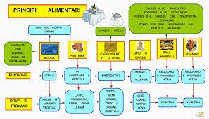 glucidi alimenti mappa concettuale principi alimentari scuolissima