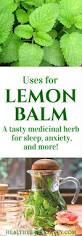 top 25 best lemon balm ideas on pinterest lemon balm uses