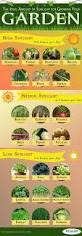 el cultivo de hortalizas de residuos de alimentos es una gran