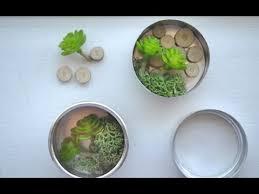 easy diy mini terrarium magnets youtube