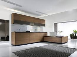 buy kitchen cabinets and organize the kitchen in the best possible