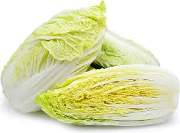 cabbage china napa cabbage information recipes and facts