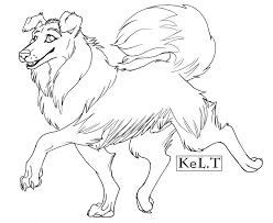 rough collie template by senshee on deviantart
