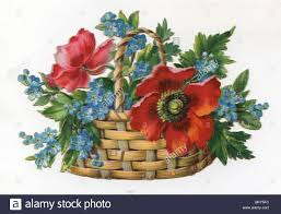 red poppies ad forget me nots in wicker basket stock photo