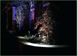 Led Landscape Tree Lights Led Landscape Tree Lights Landscaping Lighting On Poolside Palm