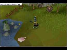 thanksgiving event in runescape 2008
