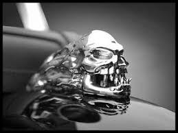 brand new skull skeleton fender ornament mascot highway