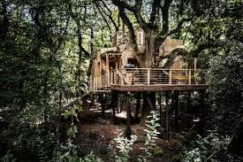 ltd and beam studio come together to create a treehouse in the