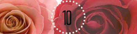 10 hochzeitstag rosenhochzeit hochzeitstage24 de sprüche geschenke tipps