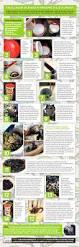 25 best ideas about como fazer jardim on pinterest fazer planta
