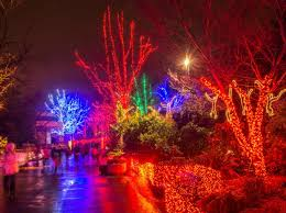 Oregon Garden Christmas Lights Welcome To The Oregon Zoo