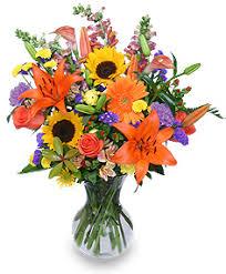 halloween flowers burlington nc r keith phillips florist