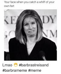 Barbra Streisand Meme - your face when you catch a whiff of your own fart lmao