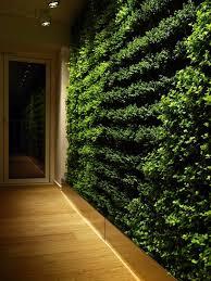 stylish modern home hallway design with indoor green wall ideas