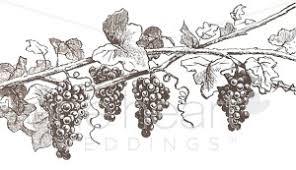 grapevine clipart fall wedding clipart