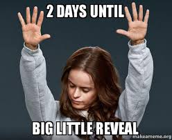 Make A Meme With 2 Pictures - 2 days until big little reveal make a meme