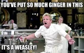 Funny Chef Memes - happy birthday chef gaming masters