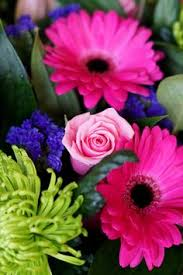 Girls Favourite Flowers - our beautiful selection of flowers this morning we love getting