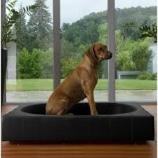 canapé pour chien grande taille le tapis pour chien grande taille est ici archzine fr