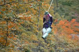 Treetop Canopy Tours by Lake Geneva Canopy Tours
