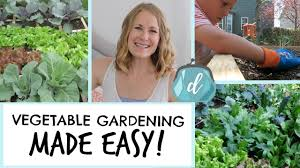 how to start an easy vegetable garden small space square foot