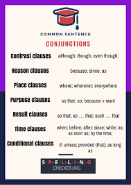 Declarative And Interrogative Sentences Worksheets Sentence Check Quiz And Tips Spelling Check