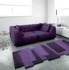 Modern Purple Rug Accessories Modern Purple Living Room Decoration Using