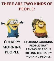 Not A Morning Person Meme - 586 best funny quotes images on pinterest funny minion jokes and
