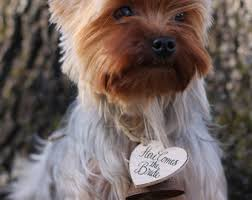 shabby chic dog ring holder images Etsy your place to buy and sell all things handmade jpg
