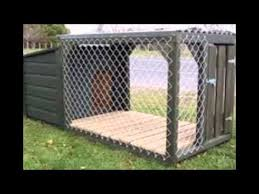 dog kennels nz youtube