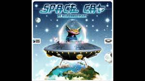 cat photo album space cat 20 year anniversary album