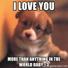 Cute I Love You Meme - i love you more than anything in the world baby 3 cute puppy