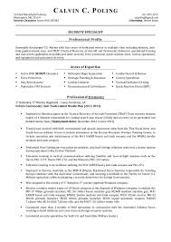 Security Guard Resume Example Resume Templates Security Professional Security Forces Resume
