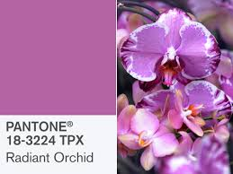 pantone colors of the year pantone u0027s radiant orchid is 2014 u0027s color of the year