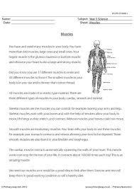 primaryleap co uk drugs and medicines worksheet
