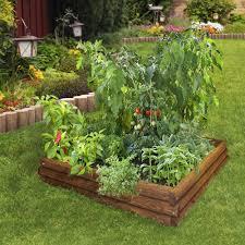 layout of kitchen garden raised bed vegetable gardening ideas home outdoor decoration