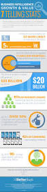 Business Intelligence Engineer 7 Telling Business Intelligence Stats Infographic