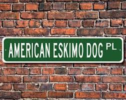 american eskimo dog forum american eskimo etsy