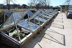 Small Backyard Greenhouse by Greenhouse Designs Descriptions And Relative Costs