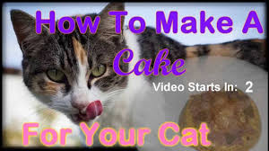how to make a cake for your cat or spotted genet youtube