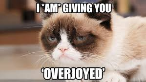 Create A Grumpy Cat Meme - 7 purrrfect social media lessons from grumpy cat audiense