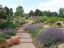Backyard Ideas For Sloping Yards Xeriscaping Ideas Landscaping Network