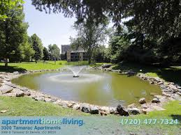 One Bedroom Apartments Aurora Co Cheap One Bedroom Apartments In Denver The 20 Best Apartments For