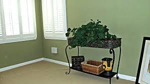 Light Green Paint Colors Most Popular Green Paint Colors Home Design