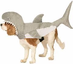 Shark Attack Halloween Costume Amazon Shark Attack Dog Costume Clothing