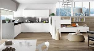 kitchen room awesome contemporary kitchen cabinets design ideas